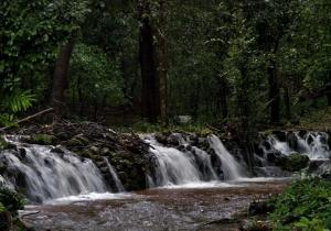 River Water - Agumbe