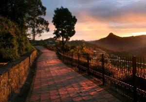Coakers Walk Sunset - Kodaikanal